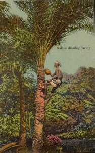 Native Drawing Toddy , India, 1900-10s ; Tower