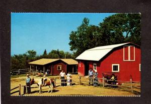NH Six Gun City Amusement Park Horses JEFFERSON NEW HAMPSHIRE Stagecoach Horses