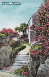 Pathway of Oleanders and Cottage, Bermuda, PU-1933