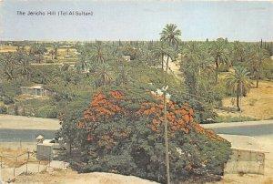 Lot179 the jericho hill tel al sultan palestine