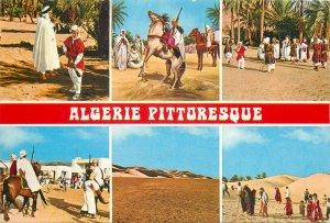 Africa Algeria pitoresque showcard scenes nomad camel oasis gun army
