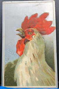 Easter Greeting Rooster 1909 Antique Postcard