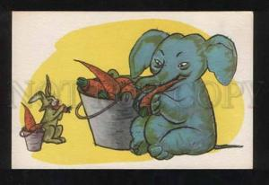 056654 Hungry ELEPHANT & HARE w/ Carrots Old PC