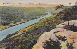 Tennessee Chattanooga The Grand Canyon Of Tennessee Albertype