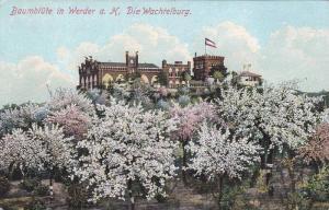 Baumblute In Werder a. H. Die Wachtelburg, Brandenburg, Germany, 1910-1920s