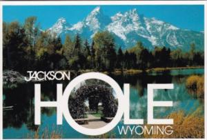 Wyoming Jackson Hole The Arch Of Elkhorns