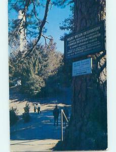 Pre-1980 SIGN ON TREE Mount Wilson - Altadena & Pasadena & Los Angeles CA H5854
