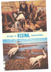 Welcome to REGINA, SASKATCHEWAN, Canada, Museum of Natural History, Life-Like...