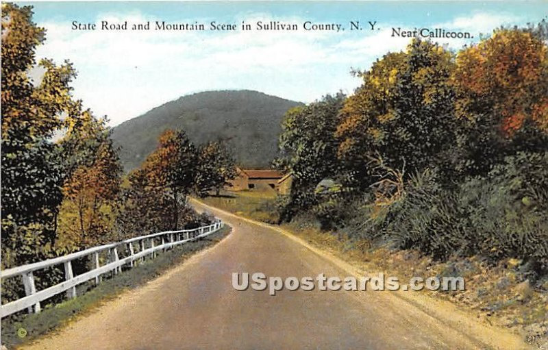 State Road and Mountain Scene - Callicoon, New York