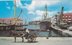 Donkey Cart, Bridgetown, Careenage (Old Docks), Barbados, West Indies, 40-60
