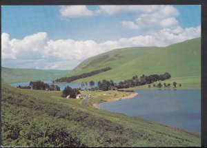 Scotland Postcard - St Mary's Loch and Loch of The Lowes, Selkirkshire  RR877