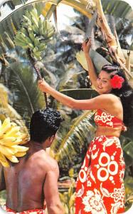 Tahiti Fiji Gathering Fruit Tahiti Gathering Fruit