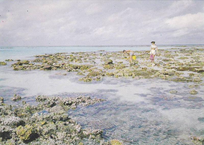 Great Barrier Reef , Coral reefs , Queensland , Australia , 50-70s