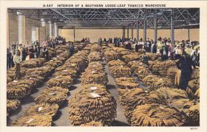 Interior Of A Southern Loose Leaf Tobacco Warehouse