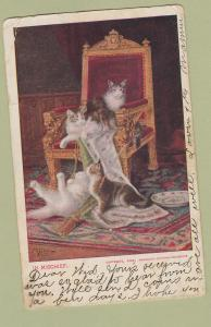 Antique Postcard In Mischief Cats Kittens Postmarked