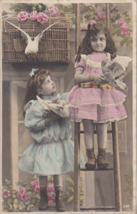 RP: Two girls with Doves & cage, Pink Roses Bushes, PU-1905 (2)