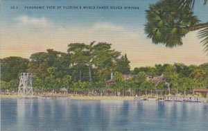 Florida Silver Springs Panoramic View Of Floridas World Famed Silver Springs