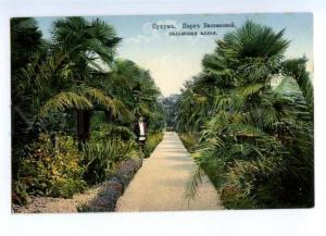 169336 Abkhazia SUKHUM Park of Baskakova palm alley Vintage PC