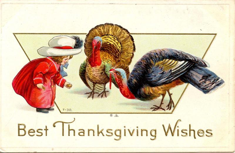 Greeting - Thanksgiving, Turkey