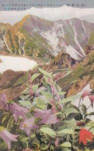 JAPAN , 1910 ; Mountain & Flowers