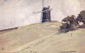 TUCK #6481: WINCHELSEA, Sussex, England, United Kingdom; The Old Mill, 1900-10s