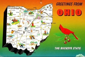 Ohio Greetings From The Buckeye State With Map 1995
