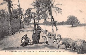 Landscape on the Shores of the Niles Egypt, Egypte, Africa Unused