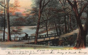 Scene in Bronx Park, New York, Early Postcard, Used in 1906