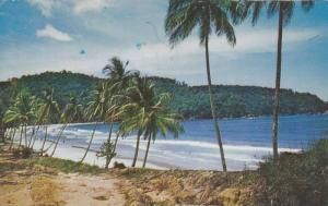 Scenic Greetings from Maracas Bay,  Trinidad,   PU_40-60s