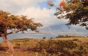 Barbados West Indies Post card Old Vintage Antique Postcard Basseterre Road S...