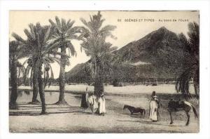 Au bord de l'Oued, Tunesia, 00-10s