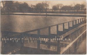 Ohio Real Photo RPPC Postcard 1912 LONDON Ohio State Fish Hatchery Ponds