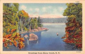 Stony Creek New York Greetings River Scenic Vintage Postcard JE228272
