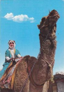 Man on Camel , Jordan , 50-70s