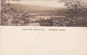 Maine Fryeburg View From Starks Hill Albertype