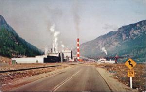 Celgar Pulp Mill Castlegar BC Unused Vintage Postcard D65