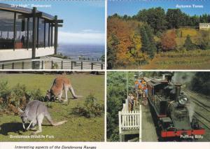 4-view postcard , Dandenong Ranges , Australia, 1960-80s
