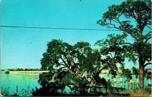 Biloxi MS Back Bay Bridge Crossing Postcard Used (31888)