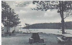 New Hampshire Lake Sunapee Dock and Picnic Grounds Georges Mills Albertype