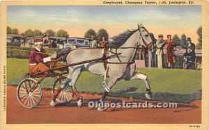Greyhoud, Champion Trotter Lexington, Kentucky, KY, USA Postal Used Unknown