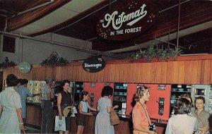 Tuxedo New York Sterling Forest Gardens Interior Vintage Postcard KK82