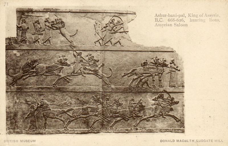Ashur-nasir-pal , King of Assyria , 00-10s ; Hunting Lions
