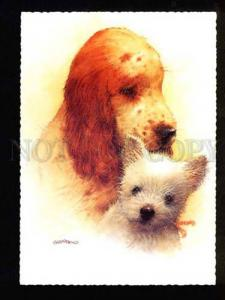 047544 Charming PUPPIES Terrier SPANIEL by GIORDANO old PC