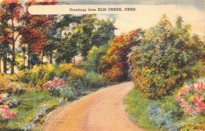 Elm Creek Nebraska~Colorful Trees & Bushes by Dirt Road~1940s Landscape Panel Pc