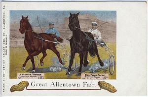 Allentown PA Dan Patch Great Allentown Fair Vintage Postcard