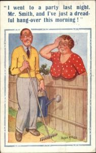 Donald McGill - Woman's Large Breasts Sagging Over Fence Pun Comic PC