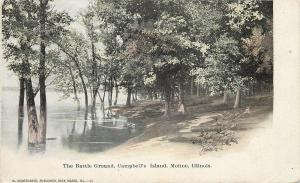 Moline Illinois~The Battle Ground~Campbells Island~Trees in Water~1906 Postcard