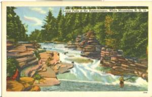 Lower Falls of the Ammonoosuc, White Mountains, NH, unuse...