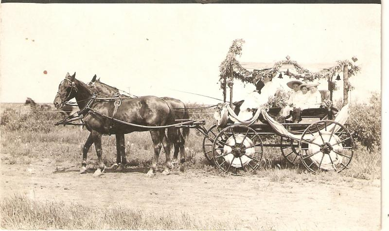 Horse drawn decorated buggy. Canada Nice old vintage postcard