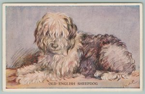 Artist Lucy Dawson Mac~Dogs~Old English Sheepdog~Eye Peeks Out~Tailwagger Series